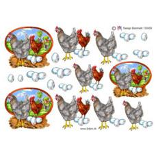 Dyr - Høns med baggrund